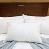 Royal Blue Bed Pillow Medium 20 X 26 Inch White Reusable, 1 Dozen MON 25893000