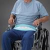 Posey Wheelchair Safety Belt Posey , 1/ EA MON 388634EA