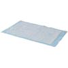Medtronic Simplicity™ Basic Underpad 23 x 24, 200/CS MON 71363100