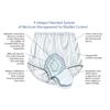 Murray Salk HealthDri® Pull On Protective Underwear, White, Size 8 MON 80088600