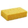 cleaning chemicals, brushes, hand wipers, sponges, squeegees: Medium Cellulose Sponges