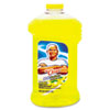 cleaning chemicals, brushes, hand wipers, sponges, squeegees: Mr. Clean® Antibacterial All-Purpose Cleaner