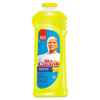 Cleaning Chemicals: Mr. Clean® Antibacterial All-Purpose Cleaner
