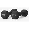WeCare Neoprene Coated 10 Lbs Dumbbells for Non-Slip Grip PTC WDN100005