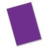 Pacon Pacon® Riverside® Construction Paper RIV 418818