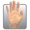 gloves: Safety Zone - Clear Powder Free TPE Stretch Polymer Gloves