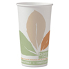 Clean and Green: Solo Bare® Eco-Forward® PLA Paper Hot Cups