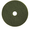 Floor Care Equipment: Treleoni - Green Scrubbing Pad - Conventional 20""