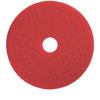 Floor Care Equipment: Treleoni - Red Spray Buffing Pad - Conventional 17""