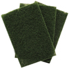 cleaning chemicals, brushes, hand wipers, sponges, squeegees: Treleoni - 86A Green Heavy Duty Scouring Pad