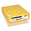 Neenah Paper Neenah Paper Exact® Vellum Bristol Cover Stock WAU 82381