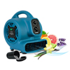 XPOWER Freshen Aire 1/5 HP 800 CFM 4 Speed Scented Mini Mighty Air Mover XPO P-260NT