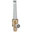 Western Enterprises RWS Series Flowmeters WSE312-RWS-2-13