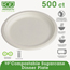 Eco-Products Eco-Products Sugarcane Plates ECOEPP005
