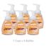 GOJO Premium Foam Antibacterial Handwash GOJ5710-06