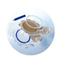 Coloplast Fistula Bed Drainage Bag 2000 mL, 6EA/BX MON10044900