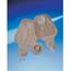 Coloplast Ileostomy Night Drainage Bag Assura Two-Piece System 50 mm Drainable, 5EA/BX MON28364900