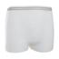 McKesson Adult Pull-Up Unisex Mesh Underpants - Large MON78303100