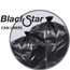 Penny Lane Black Star Low-Density Can Liners PITB73310K