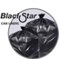Penny Lane Black Star Low-Density Can Liners PITB73720K