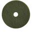 Treleoni Green Scrubbing Pad - Conventional 13
