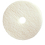Treleoni Provito White Polishing Pad - Conventional 20